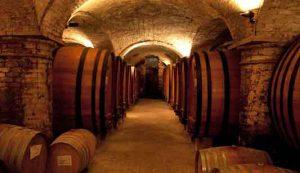 Vino rosso, testata la percezione del gusto amaro e astringente (10/10/2017)