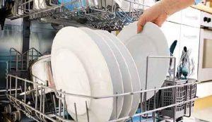 Studiati i batteri, i funghi, le muffe e i lieviti che abitano nelle lavastoviglie